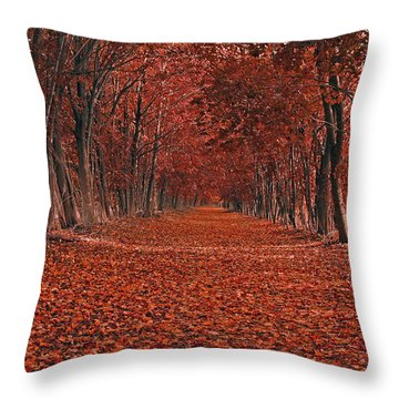 Autumn Throw Pillow by Raymond Salani III