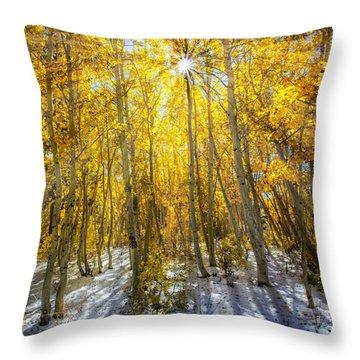 Autumn Rays Throw Pillow