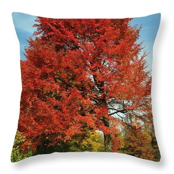 Autumn Red Throw Pillow by Frozen in Time Fine Art Photography