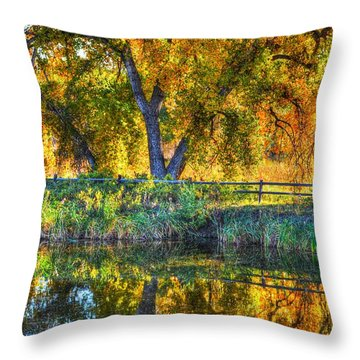 Autumn Reflecting Throw Pillow