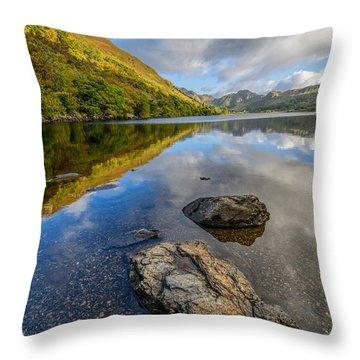 Autumn Reflection Throw Pillow by Adrian Evans