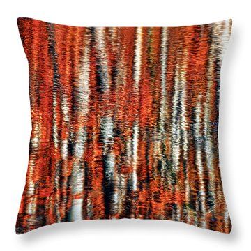 Autumn Reflection Throw Pillow by Marcia Colelli
