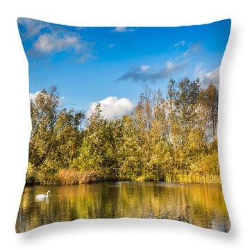 Throw Pillow featuring the photograph Autumn Reflections by Gary Gillette