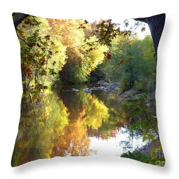 Autumn Reflections Throw Pillow by Marlene Rose Besso