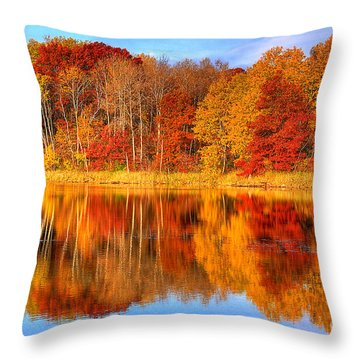 Autumn Reflections Minnesota Autumn Throw Pillow