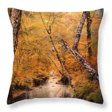 Autumn Riches 1 Throw Pillow by Jai Johnson