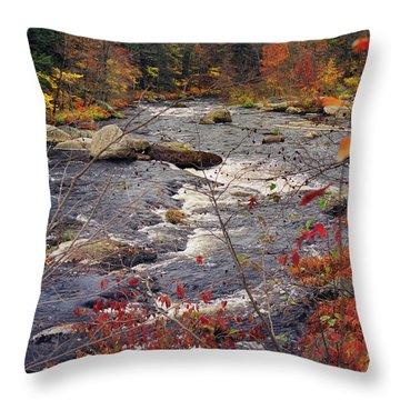Autumn River Throw Pillow by Joann Vitali