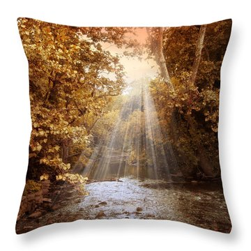 Throw Pillow featuring the photograph Autumn River Light by Jessica Jenney