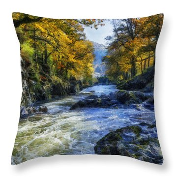 Autumn River Valley Throw Pillow by Ian Mitchell