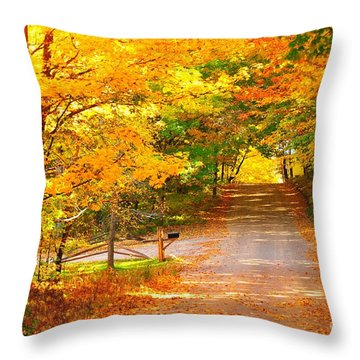 Autumn Road Home Throw Pillow by Terri Gostola