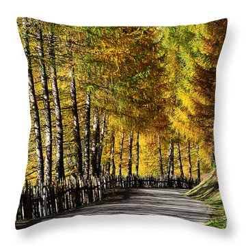 Winding Road Through The Autumn Trees Throw Pillow