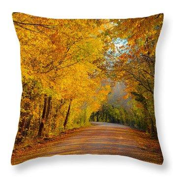 Autumn Road Throw Pillow by John Roberts