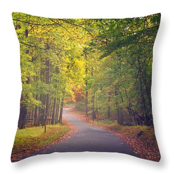 Autumn Road Throw Pillow by Rima Biswas