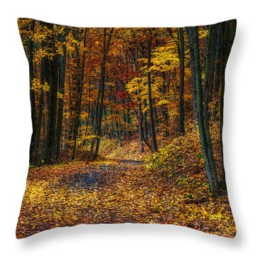 Autumn Roadway Reclamation Throw Pillow