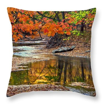 Autumn Serenity Throw Pillow by Frozen in Time Fine Art Photography