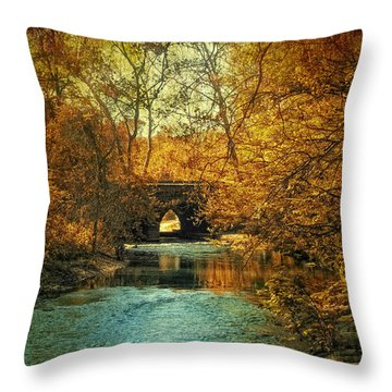 Autumn Shimmer Throw Pillow by Jessica Jenney