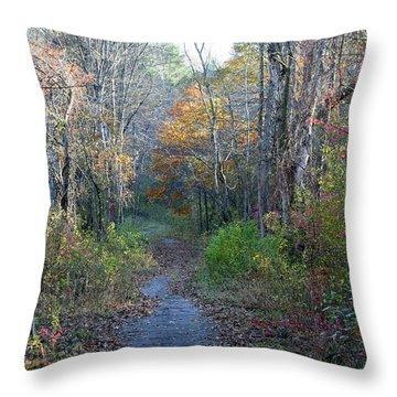 Autumn Silence No.2 Throw Pillow by Neal Eslinger