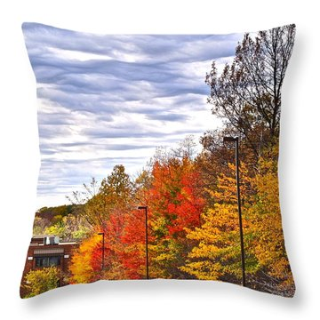 Autumn Sky Throw Pillow by Frozen in Time Fine Art Photography