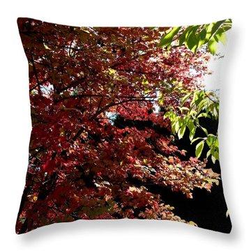 Autumn Snowball Bush Throw Pillow by Will Borden
