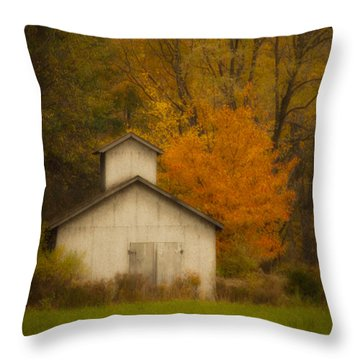 Autumn Solace Throw Pillow