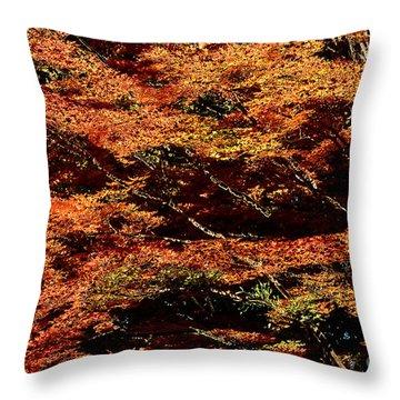 Throw Pillow featuring the digital art Autumn Solarisation 1 by Rudi Prott