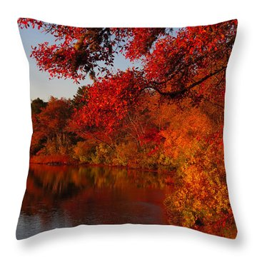 Autumn Splendor  Throw Pillow by Dianne Cowen