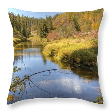 Throw Pillow featuring the photograph Autumn Splendor by Jim Sauchyn
