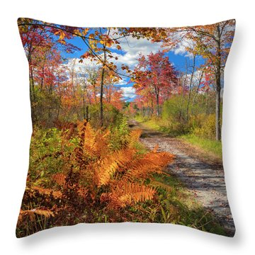 Autumn Splendor Square Throw Pillow by Bill Wakeley
