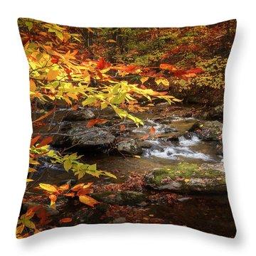 Autumn Stream Throw Pillow by Bill Wakeley