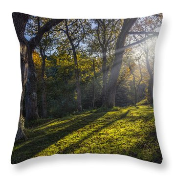 Autumn Stroll V2 Throw Pillow by Ian Mitchell