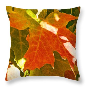 Autumn Sunlight Throw Pillow