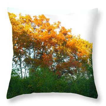 Throw Pillow featuring the photograph Autumn Sunlight by Pete Trenholm