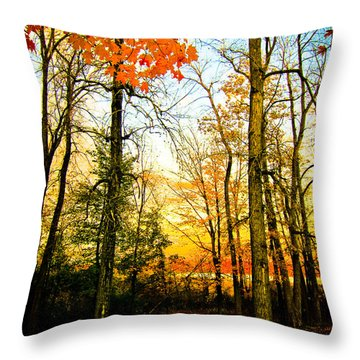 Throw Pillow featuring the photograph Autumn Sunset  by Sara Frank