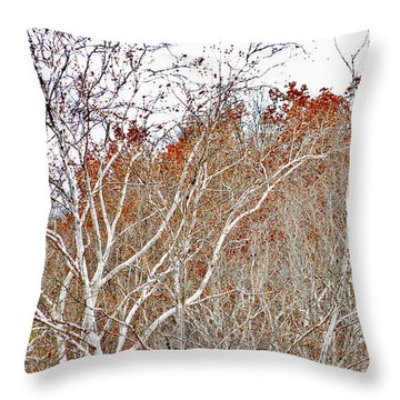Autumn Sycamores Throw Pillow