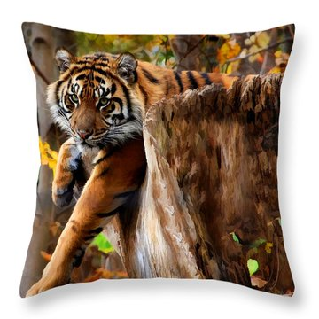 Throw Pillow featuring the photograph Autumn Tiger by Elaine Manley
