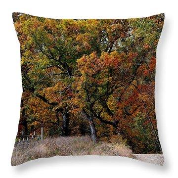 Autumn Trail 2 Throw Pillow