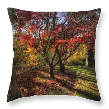 Autumn Tree Sunshine Throw Pillow