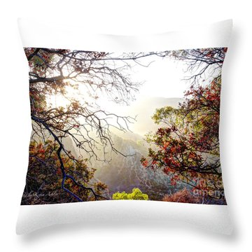Throw Pillow featuring the photograph Autumn Trees by Kevin Ashley