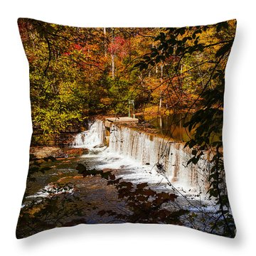 Autumn Trees On Duck River Throw Pillow by Jerry Cowart