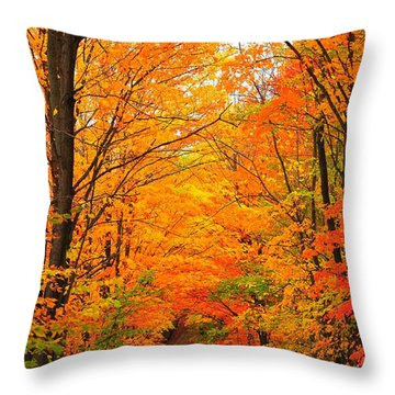 Autumn Tunnel Of Trees Throw Pillow by Terri Gostola