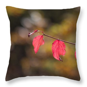 Throw Pillow featuring the photograph Autumn Twig With Red Leaves by Jivko Nakev