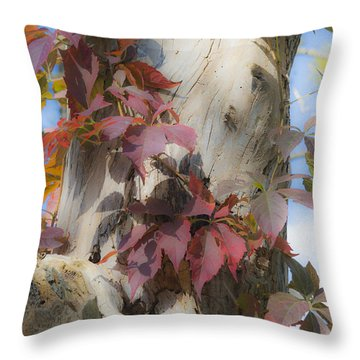 Autumn Veil Throw Pillow