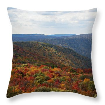 Autumn Vista Throw Pillow
