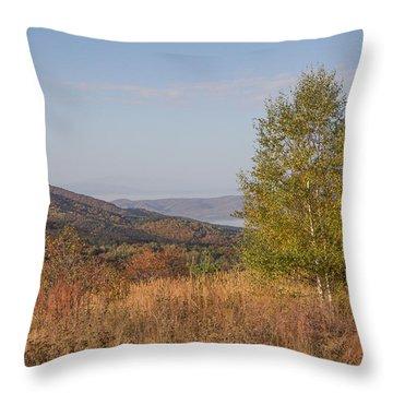 Throw Pillow featuring the pyrography Autumn Vitosha Mountain Bulgaria by Jivko Nakev