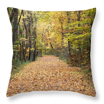 Autumn Walk Throw Pillow by John Crothers