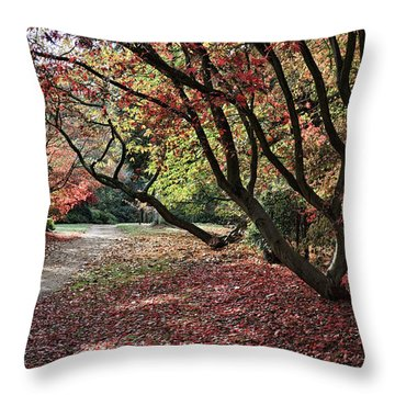 Throw Pillow featuring the photograph Autumn Walk by Shirley Mitchell