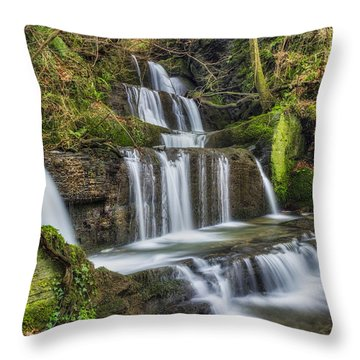 Autumn Waterfall Throw Pillow by Ian Mitchell