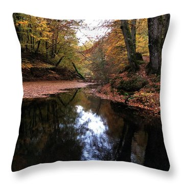 Autumn Weather Denmark Throw Pillow