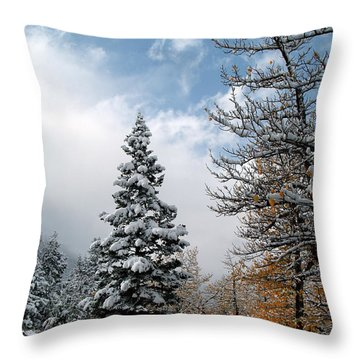 Autumn Winter Colors 2 Throw Pillow