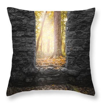 Throw Pillow featuring the photograph Autumn Within Long Pond Ironworks - Historical Ruins by Gary Heller